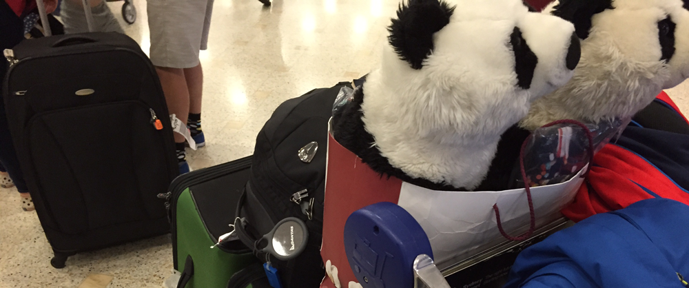 tile-luggage-pandas